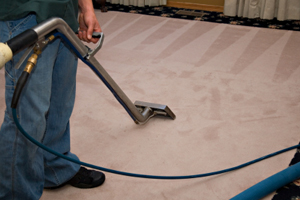 Carpet Cleaning North Hollywood, CA